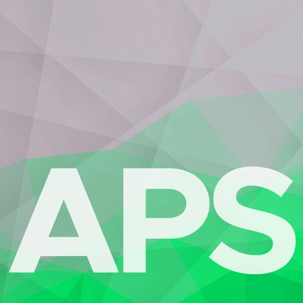 4APS Multiressourcenplanung